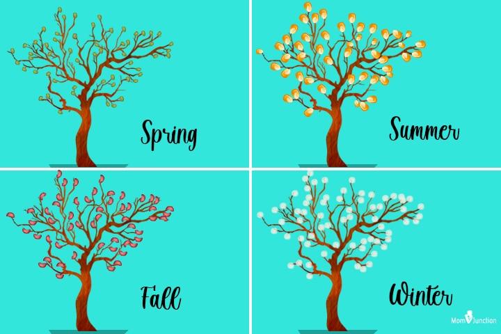 Four seasons craft