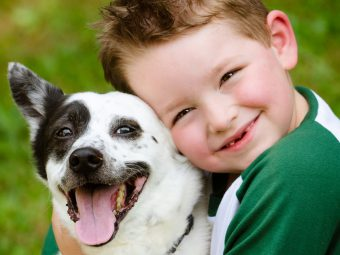 15 Short And Funny Poems About Dogs For Kids