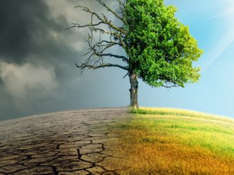 What Is Climate Change? Consequences, Causes, And Facts For Kids