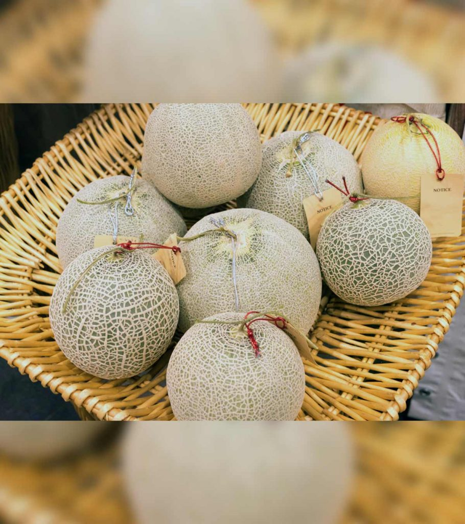 Can Babies Have Cantaloupe Benefits And Precautions To Take 910x1024