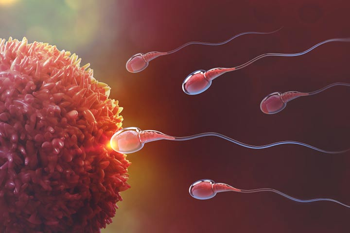 Home Remedies To Increase Fertility In Hindi