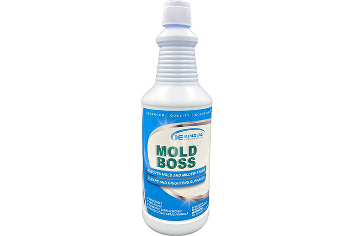 Mold Boss Professional Mold And Mildew Remover, Cleaner