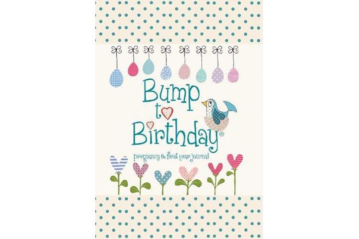 Bump To Birthday Pregnancy & First Year Journal - Helen Stephens
