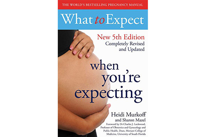 What To Expect When You're Expecting – Heidi Murkoff