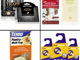 11 Best Moth Traps For Closets And Kitchen In 2021