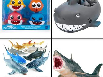 11 Best Shark Toys To Play In 2021