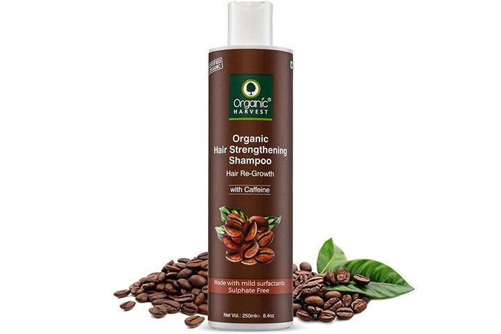 Organic Harvest Coffee Shampoo For Hair Fall Control & Hair Growth