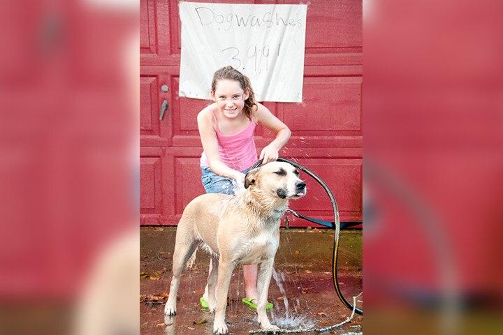 Host a dog wash
