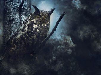 भूत की कहानी : उल्लू और भूतों के सरदार का सपना | Ullu Or Bhooton Ke Sardar Ka Sapna Story In Hindi