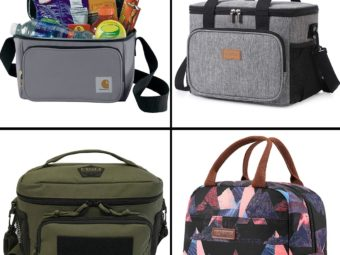 15 Best Lunch Coolers To Buy In 2021