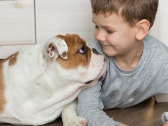 80 Really Funny Dog Jokes For Kids