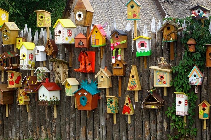 Colorful bird feeder