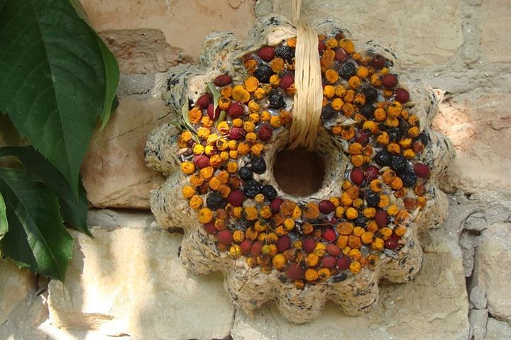 Cookie-cutter bird feeder