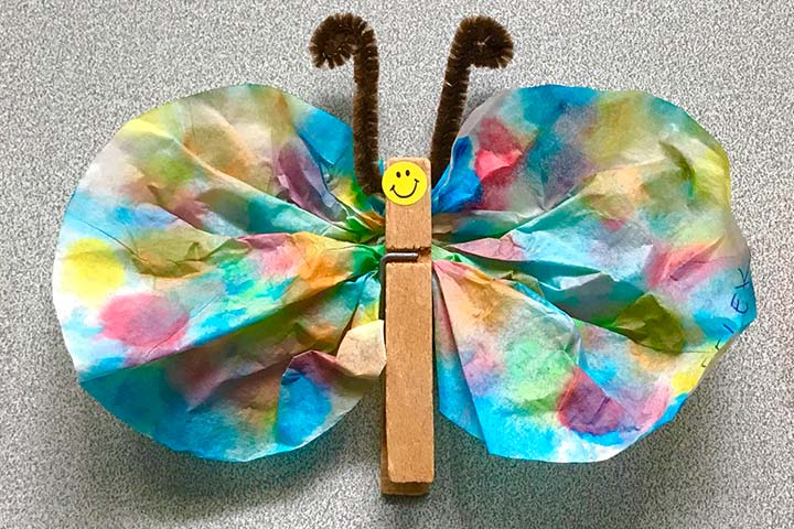 Pipe cleaner and popsicle stick butterfly