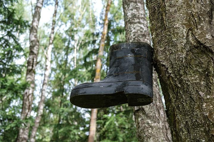 Shoe bird feeder