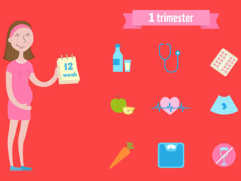 The First Trimester Of Pregnancy: Guide And What To Expect
