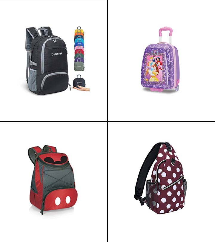 11 Best Bags For Disney World In 2021