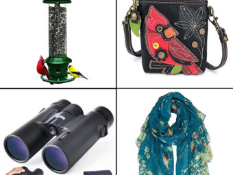 15 Best Gifts For Bird Lovers Of 2021