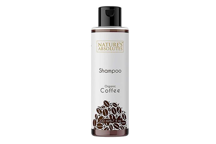Natures Absolutes Organic Shampoo