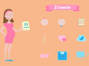 The Second Trimester Of Pregnancy: Guide And What To Expect